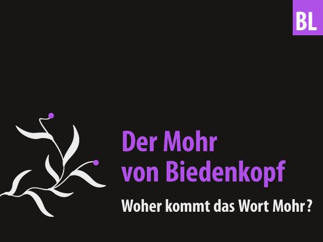 Der Mohr von Biedenkopf